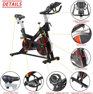 leem indoor bike 35lb. flywheel cardio workout